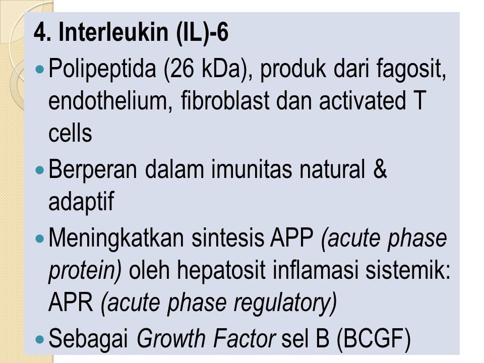 4. Interleukin (IL)-6 Polipeptida (26 kDa), produk dari fagosit, endothelium, fibroblast dan activated T cells Berperan dalam imunitas natural & adapt