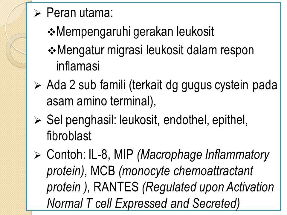  Peran utama:  Mempengaruhi gerakan leukosit  Mengatur migrasi leukosit dalam respon inflamasi  Ada 2 sub famili (terkait dg gugus cystein pada asam amino terminal),  Sel penghasil: leukosit, endothel, epithel, fibroblast  Contoh: IL-8, MIP (Macrophage Inflammatory protein), MCB (monocyte chemoattractant protein ), RANTES (Regulated upon Activation Normal T cell Expressed and Secreted)