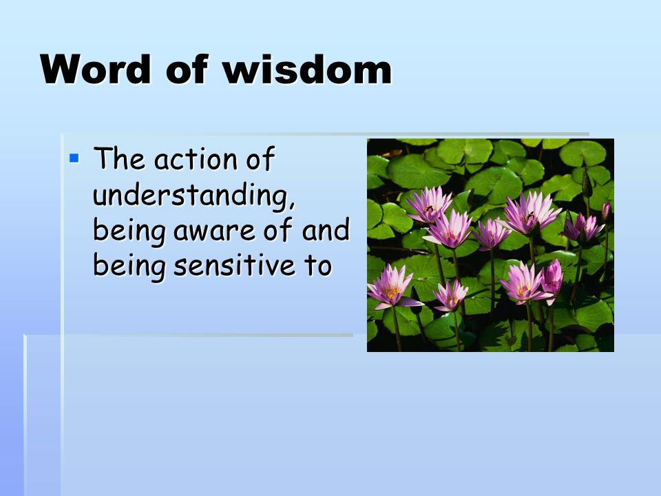 Word of wisdom  The action of understanding, being aware of and being sensitive to