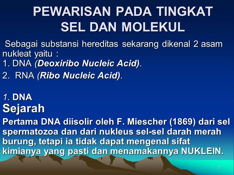 PEWARISAN PADA TINGKAT SEL DAN MOLEKUL Sebagai substansi hereditas sekarang dikenal 2 asam nukleat yaitu : 1. DNA (Deoxiribo Nucleic Acid). Sebagai su