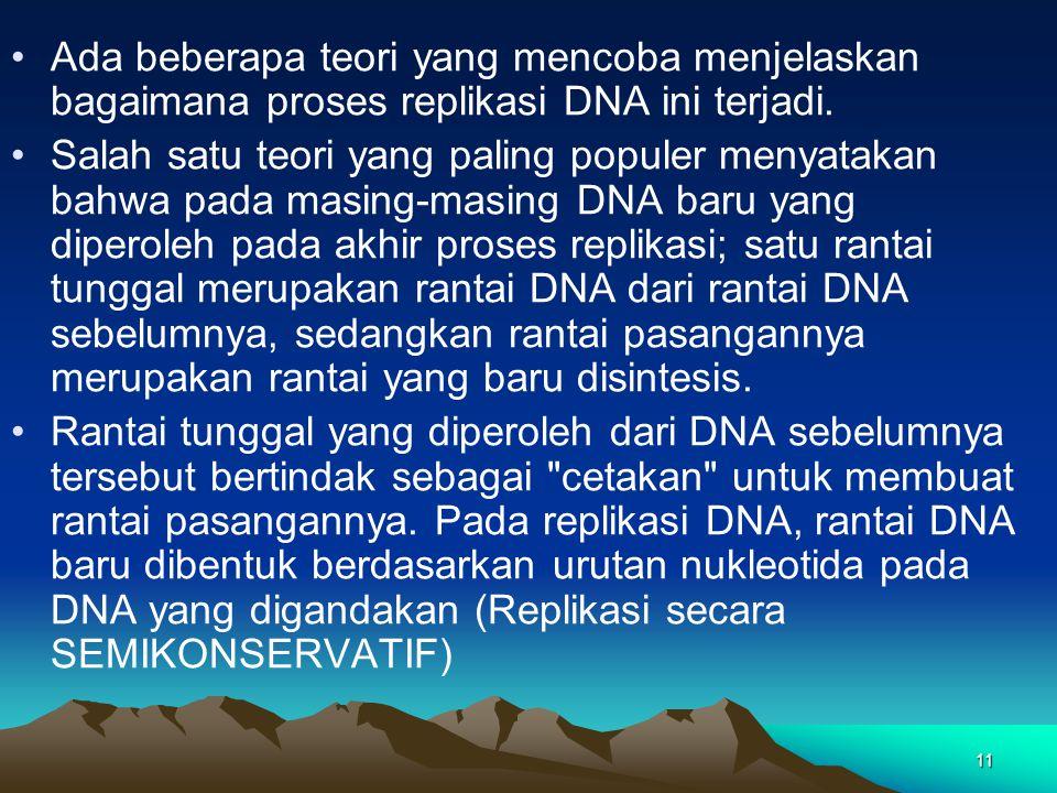 11 Ada beberapa teori yang mencoba menjelaskan bagaimana proses replikasi DNA ini terjadi. Salah satu teori yang paling populer menyatakan bahwa pada