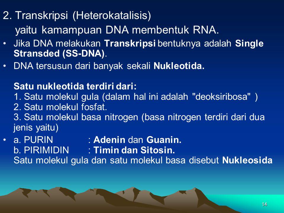 14 2. Transkripsi (Heterokatalisis) yaitu kamampuan DNA membentuk RNA. Jika DNA melakukan Transkripsi bentuknya adalah Single Stransded (SS-DNA). DNA