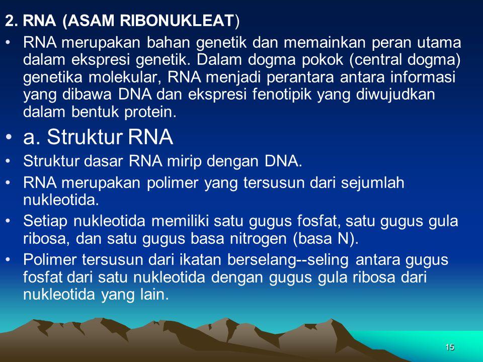 15 2. RNA (ASAM RIBONUKLEAT) RNA merupakan bahan genetik dan memainkan peran utama dalam ekspresi genetik. Dalam dogma pokok (central dogma) genetika