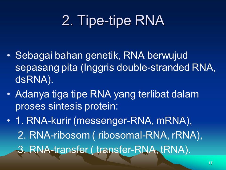 2. Tipe-tipe RNA Sebagai bahan genetik, RNA berwujud sepasang pita (Inggris double-stranded RNA, dsRNA). Adanya tiga tipe RNA yang terlibat dalam pros