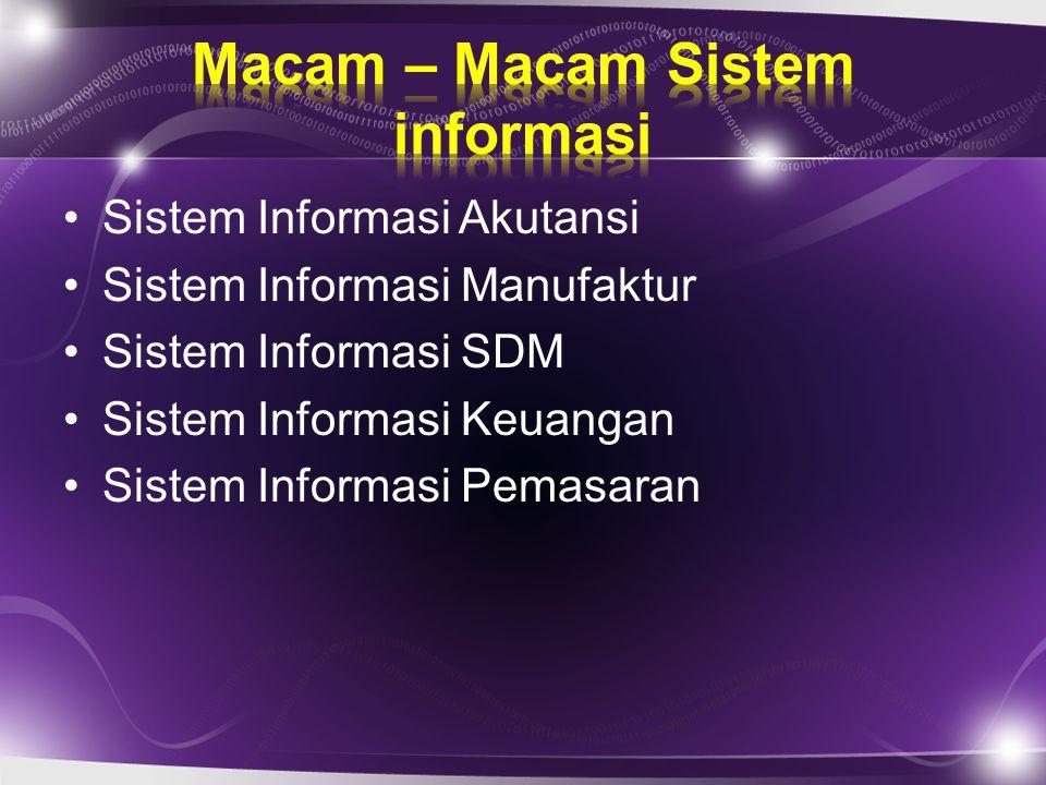 Sistem Informasi Akutansi Sistem Informasi Manufaktur Sistem Informasi SDM Sistem Informasi Keuangan Sistem Informasi Pemasaran