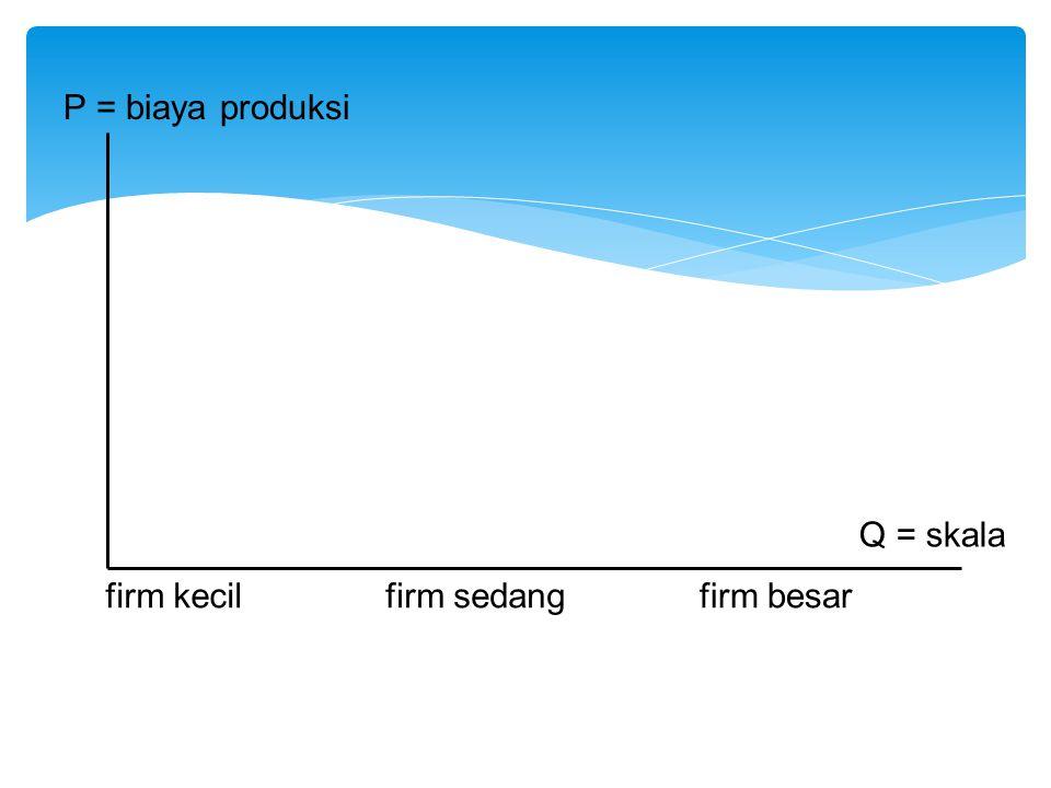 P = biaya produksi Q = skala firm kecilfirm sedangfirm besar