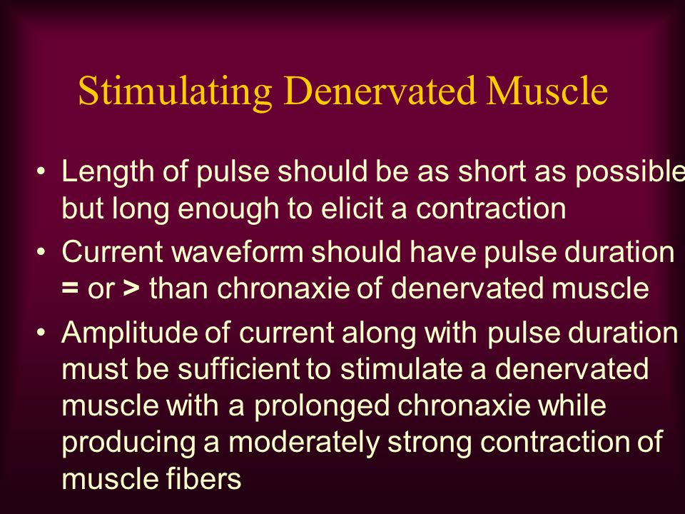 Stimulating Denervated Muscle Length of pulse should be as short as possible but long enough to elicit a contraction Current waveform should have puls