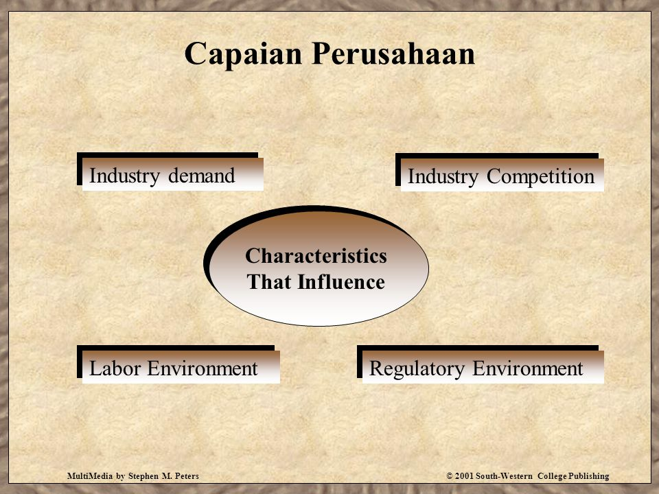 MultiMedia by Stephen M. Peters© 2001 South-Western College Publishing Capaian Perusahaan Industry demand Industry Competition Labor Environment Regul