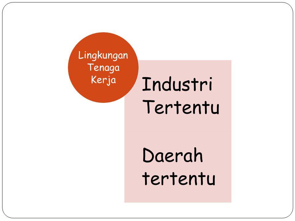 Industri Tertentu Daerah tertentu Lingkungan Tenaga Kerja
