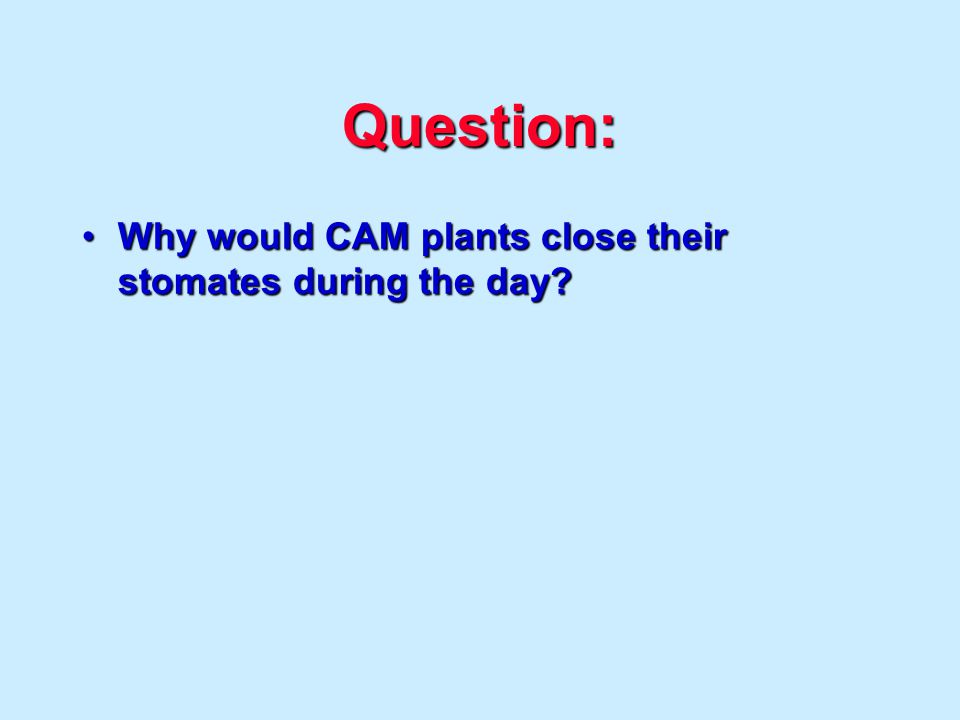Question: Why would CAM plants close their stomates during the day?Why would CAM plants close their stomates during the day?