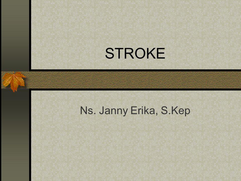 STROKE Ns. Janny Erika, S.Kep