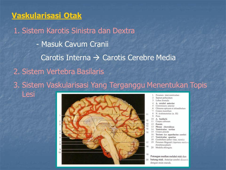Vaskularisasi Otak 1.Sistem Karotis Sinistra dan Dextra - Masuk Cavum Cranii Carotis Interna  Carotis Cerebre Media 2.Sistem Vertebra Basilaris 3.Sis