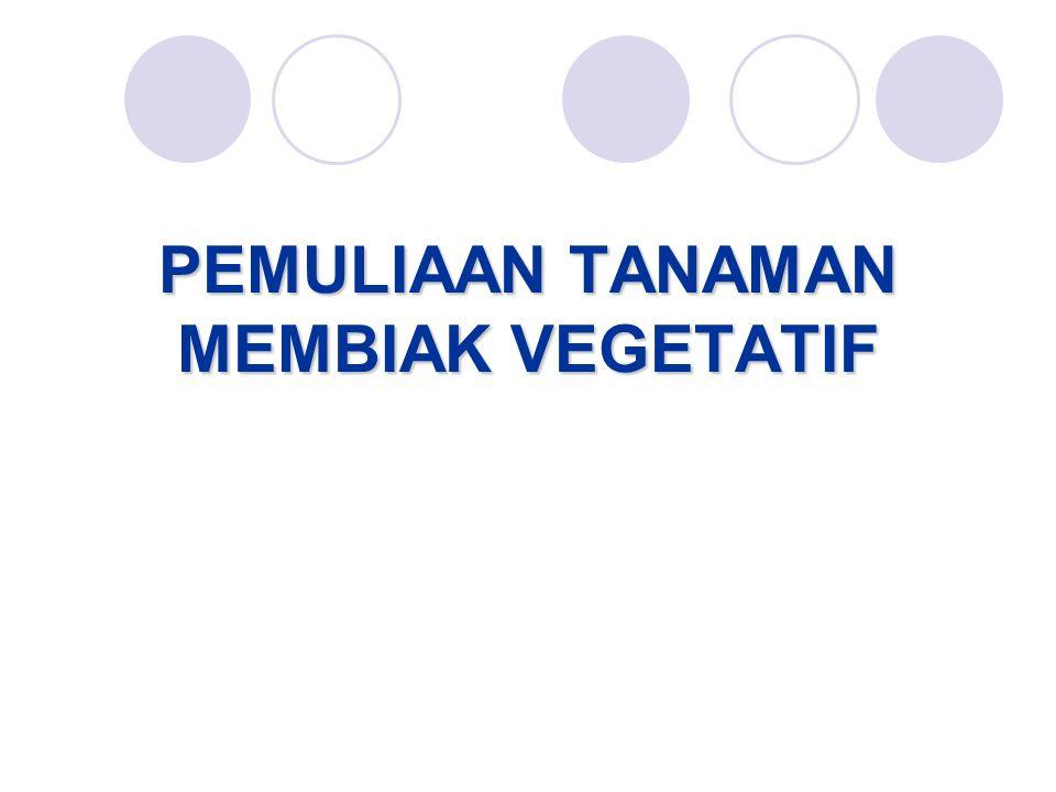 Prosedur seleksi ubijalar Tahun pertama : seleksi berdasarkan tanaman tunggal (intensitas 5 – 10%) Tahun kedua : seleksi berdasarkan petak tunggal (intensitas 2 – 4 %).