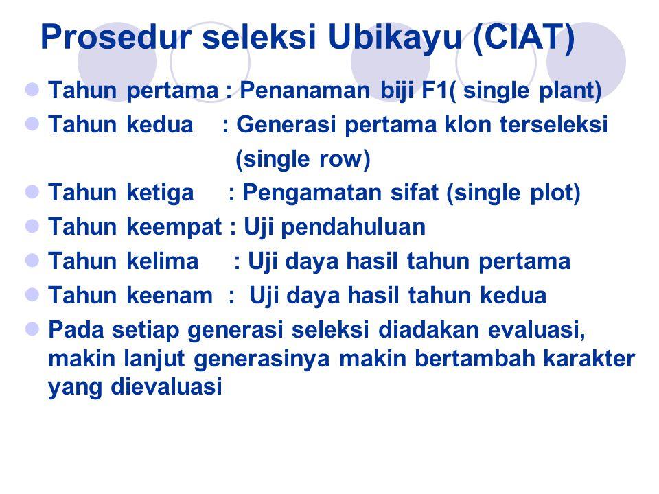 Prosedur seleksi Ubikayu (CIAT) Tahun pertama : Penanaman biji F1( single plant) Tahun kedua : Generasi pertama klon terseleksi (single row) Tahun ket