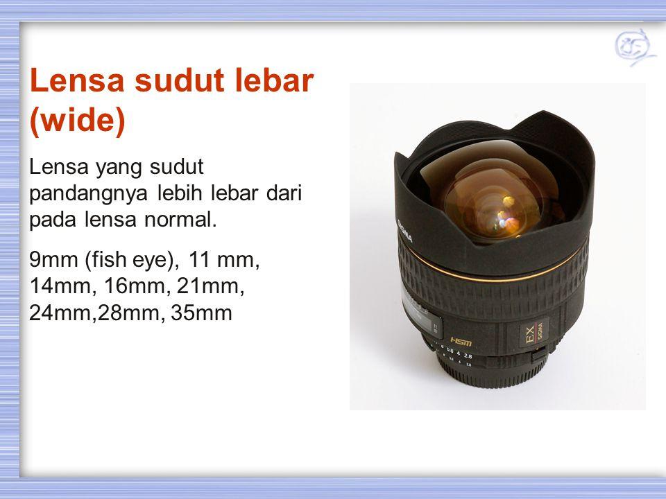 Lensa Normal / Standard Lensa yang menghasilkan tampilan gambar kurang lebih sama dengan penglihatan mata biasa. Sudut pandang pengambilan kurang lebi