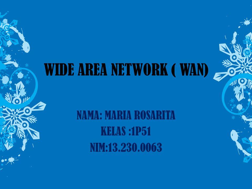 WIDE AREA NETWORK ( WAN) NAMA: MARIA ROSARITA KELAS :1P51 NIM:13.230.0063