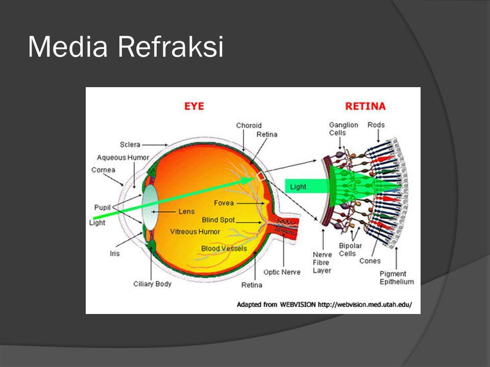 Anatomi dan Histologi Lensa  Lensa : struktur transparan, bikonveks, tersusun atas kristalin.