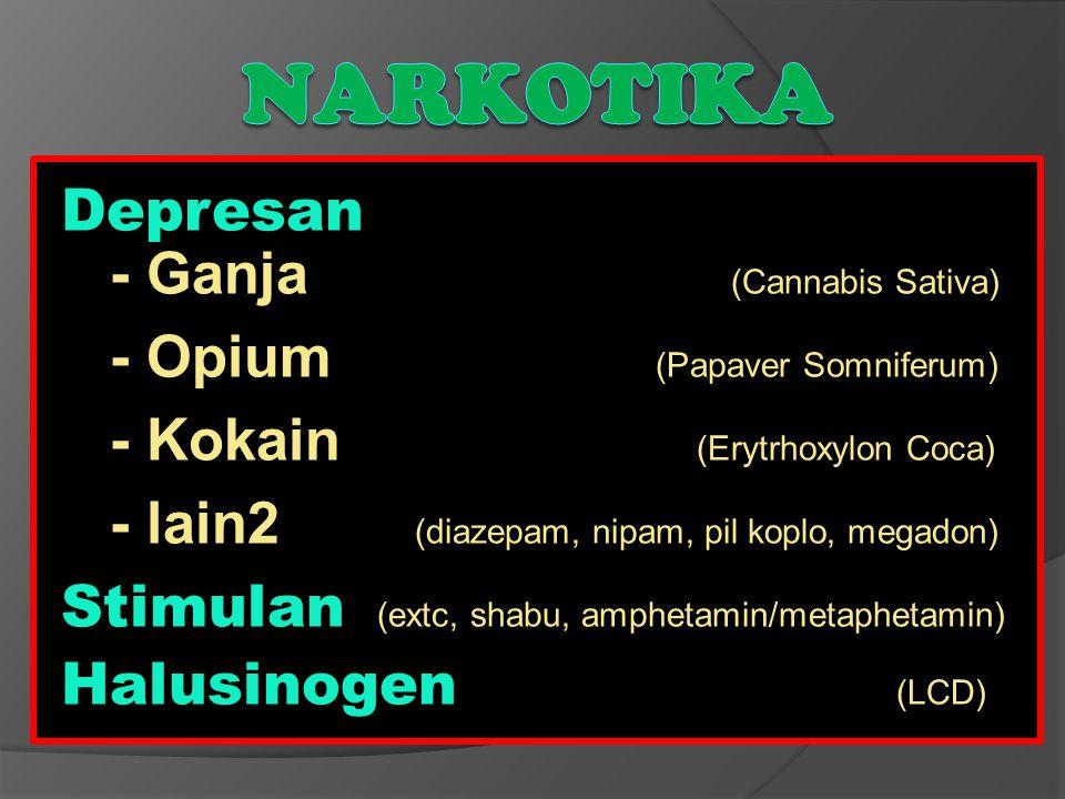Depresan - Ganja (Cannabis Sativa) - Opium (Papaver Somniferum) - Kokain (Erytrhoxylon Coca) - lain2 (diazepam, nipam, pil koplo, megadon) Stimulan (e