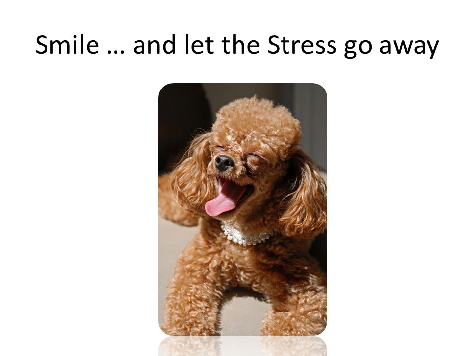 Smile … and let the Stress go away