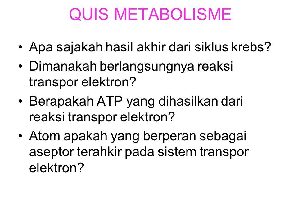 Rangkuman reaksi aerob. Bab 2 Metabolisme