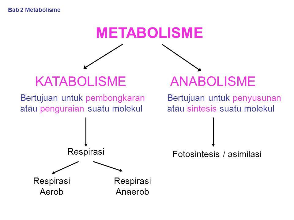 Faktor-faktor yang mempengaruhi kerja enzim Suhu pH Aktivator dan inhibitor Konsentrasi enzim Konsentrasi substrat Bab 2 Metabolisme