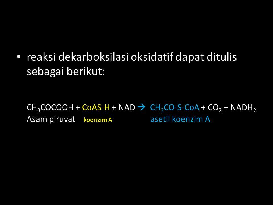 reaksi dekarboksilasi oksidatif dapat ditulis sebagai berikut: CH 3 COCOOH + CoAS-H + NAD  CH 3 CO-S-CoA + CO 2 + NADH 2 Asam piruvat koenzim A aseti