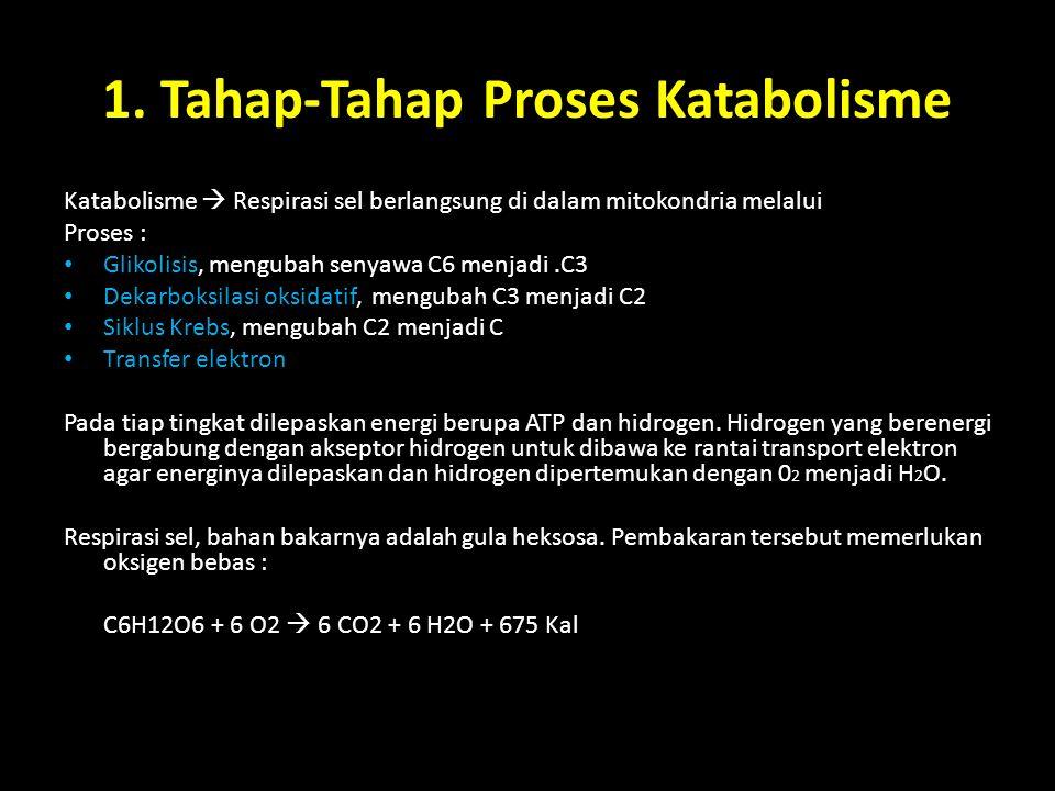 1. Tahap-Tahap Proses Katabolisme Katabolisme  Respirasi sel berlangsung di dalam mitokondria melalui Proses : Glikolisis, mengubah senyawa C6 menjad