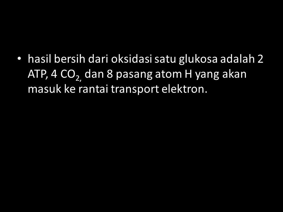 hasil bersih dari oksidasi satu glukosa adalah 2 ATP, 4 CO 2, dan 8 pasang atom H yang akan masuk ke rantai transport elektron.