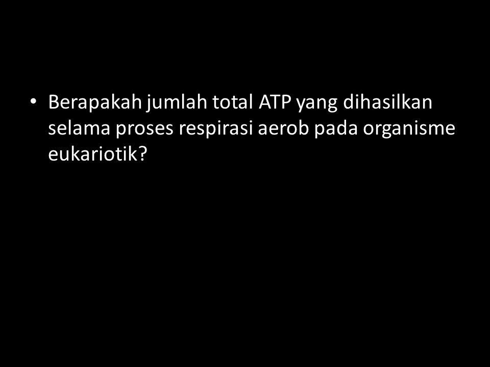 Berapakah jumlah total ATP yang dihasilkan selama proses respirasi aerob pada organisme eukariotik?