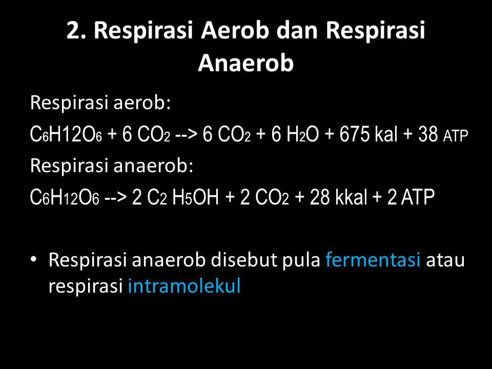 2. Respirasi Aerob dan Respirasi Anaerob Respirasi aerob: C 6 H12O 6 + 6 CO 2 --> 6 CO 2 + 6 H 2 O + 675 kal + 38 ATP Respirasi anaerob: C 6 H 12 O 6