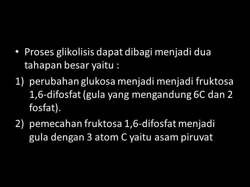 Proses glikolisis dapat dibagi menjadi dua tahapan besar yaitu : 1)perubahan glukosa menjadi menjadi fruktosa 1,6-difosfat (gula yang mengandung 6C da