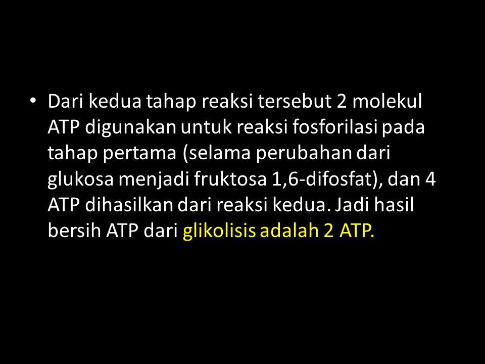 Dari kedua tahap reaksi tersebut 2 molekul ATP digunakan untuk reaksi fosforilasi pada tahap pertama (selama perubahan dari glukosa menjadi fruktosa 1