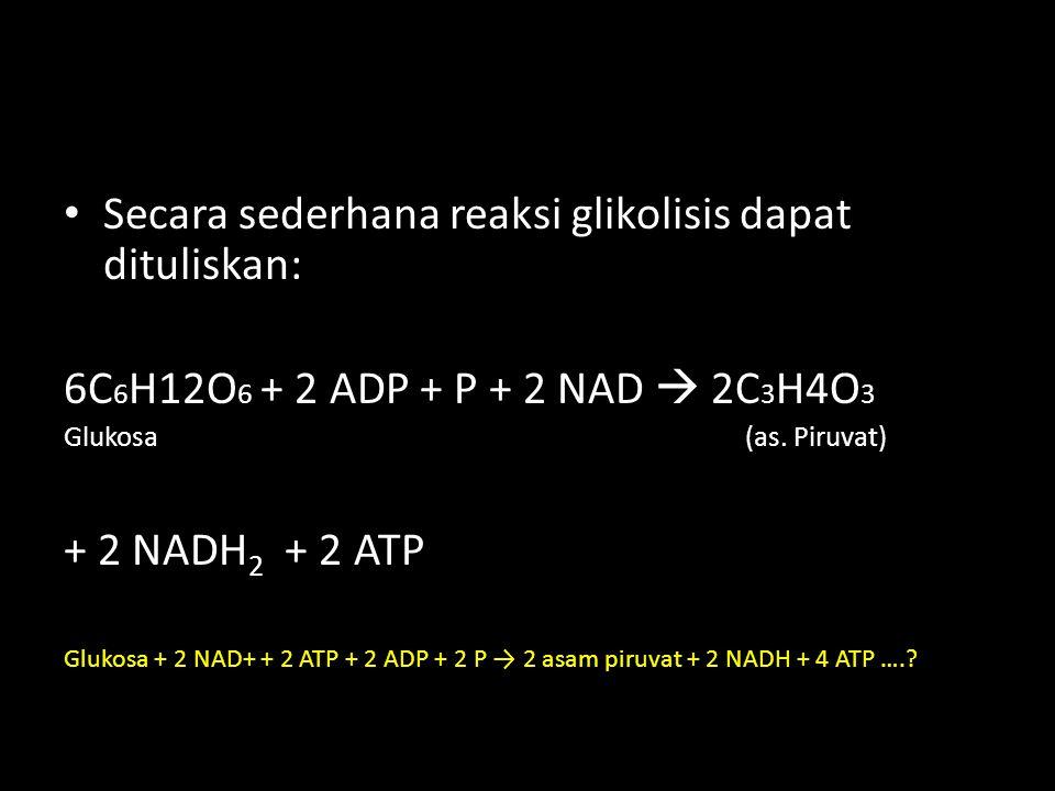 Secara sederhana reaksi glikolisis dapat dituliskan: 6C 6 H12O 6 + 2 ADP + P + 2 NAD  2C 3 H4O 3 Glukosa (as. Piruvat) + 2 NADH 2 + 2 ATP Glukosa + 2