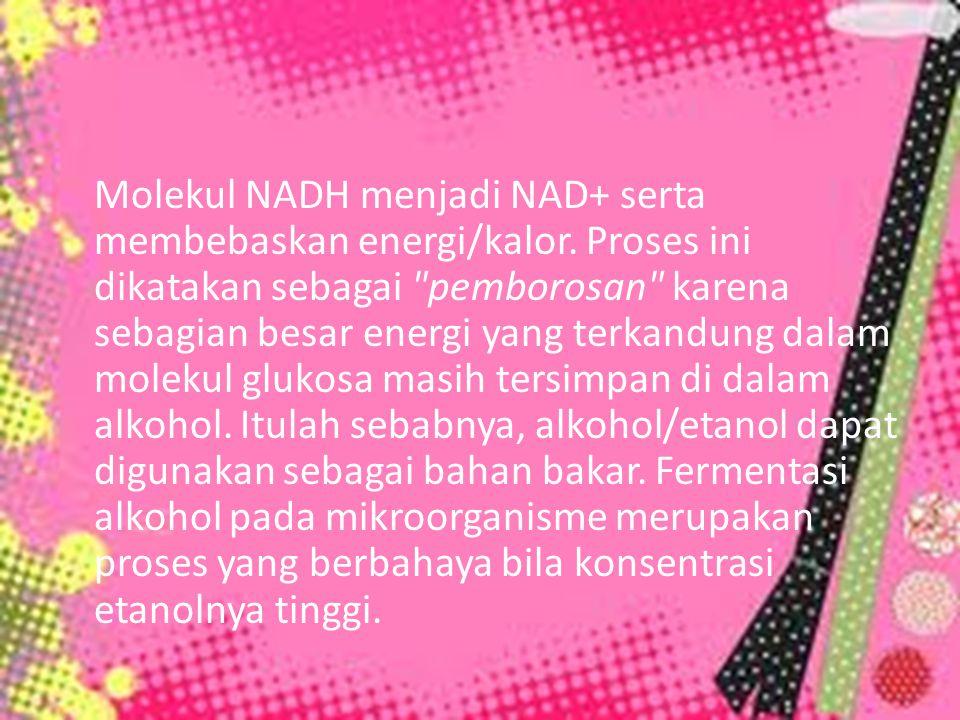 Molekul NADH menjadi NAD+ serta membebaskan energi/kalor. Proses ini dikatakan sebagai