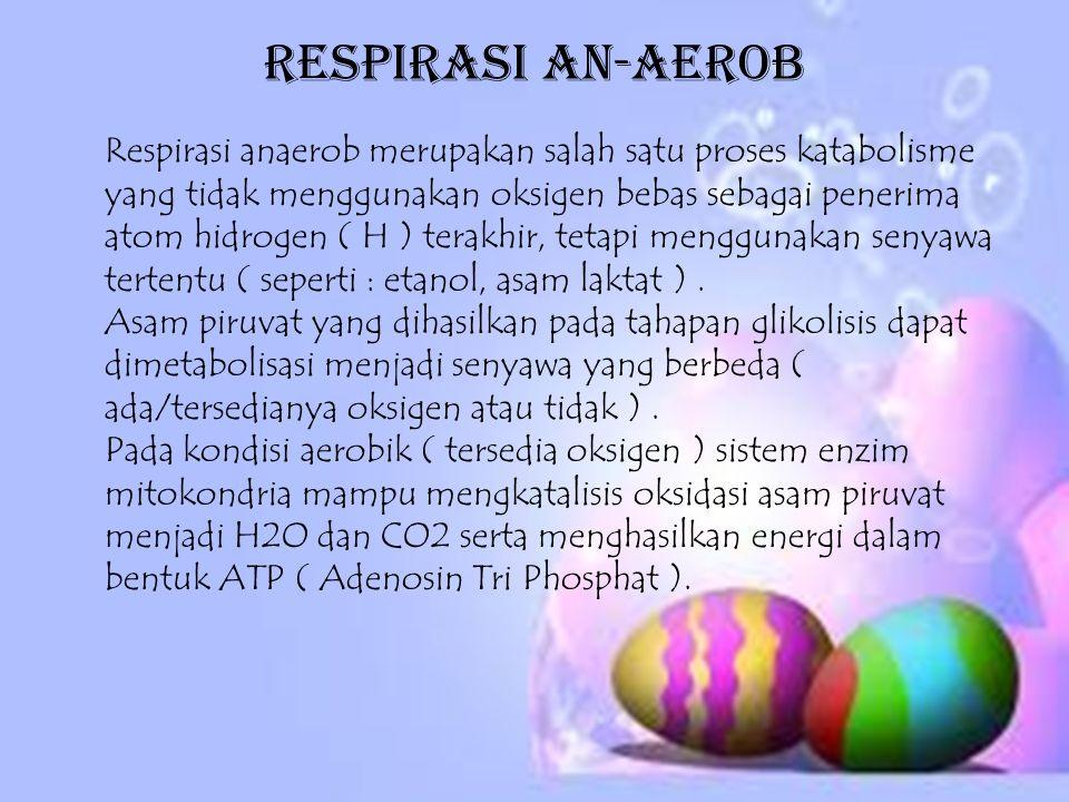 Respirasi An-aerob Respirasi anaerob merupakan salah satu proses katabolisme yang tidak menggunakan oksigen bebas sebagai penerima atom hidrogen ( H )