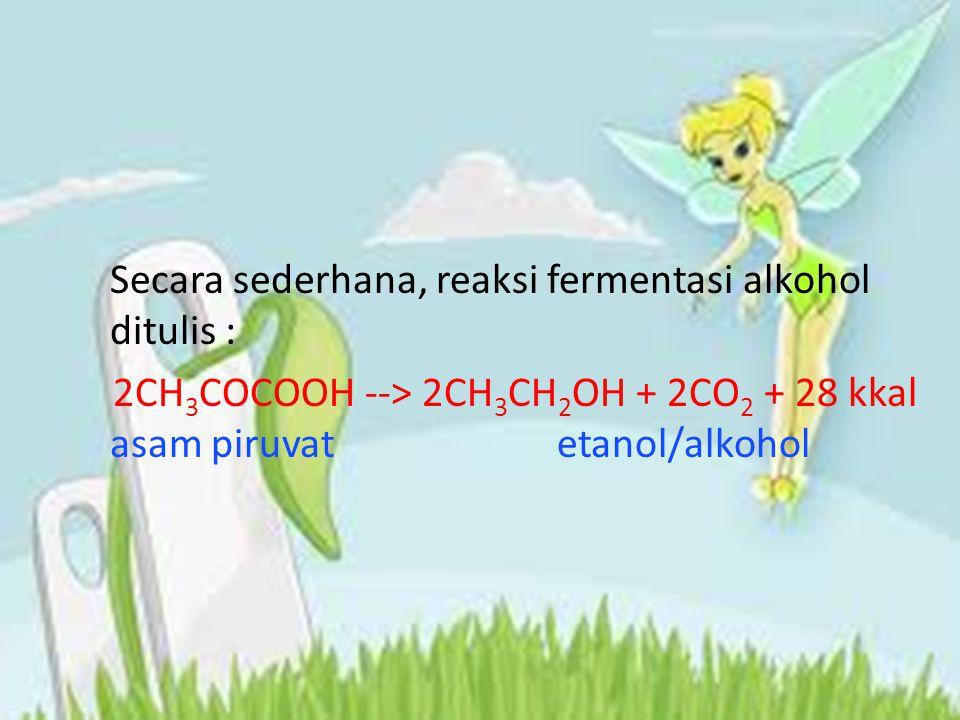 Secara sederhana, reaksi fermentasi alkohol ditulis : 2CH 3 COCOOH --> 2CH 3 CH 2 OH + 2CO 2 + 28 kkal asam piruvat etanol/alkohol