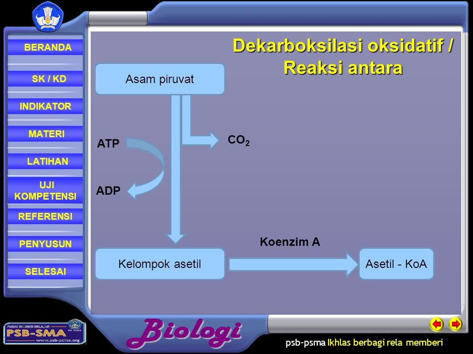 psb-psma Ikhlas berbagi rela memberi REFERENSI LATIHAN MATERI PENYUSUN INDIKATOR SK / KD UJI KOMPETENSI BERANDA SELESAIGlikolisis berlangsung di Sitosol Rangkaian reaksi pengubahan glukosa menjadi asam piruvat dengan menghasilkan NADH dan ATP yang terjadi di dalam sitoplasma