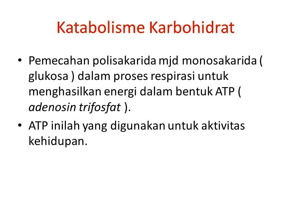 Pemecahan polisakarida mjd monosakarida ( glukosa ) dalam proses respirasi untuk menghasilkan energi dalam bentuk ATP ( adenosin trifosfat ).