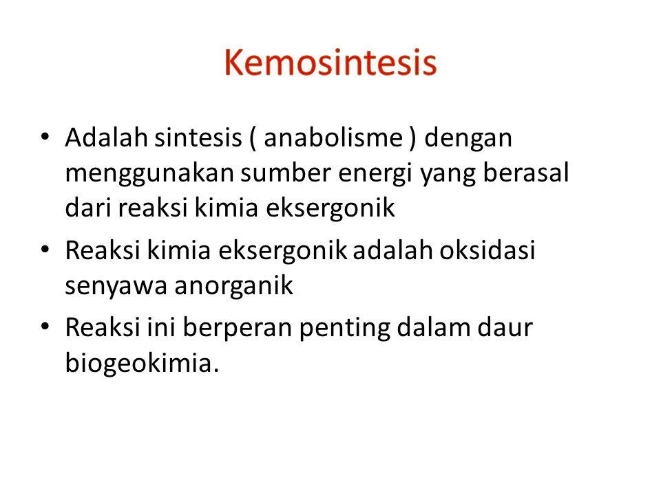 Adalah sintesis ( anabolisme ) dengan menggunakan sumber energi yang berasal dari reaksi kimia eksergonik Reaksi kimia eksergonik adalah oksidasi seny