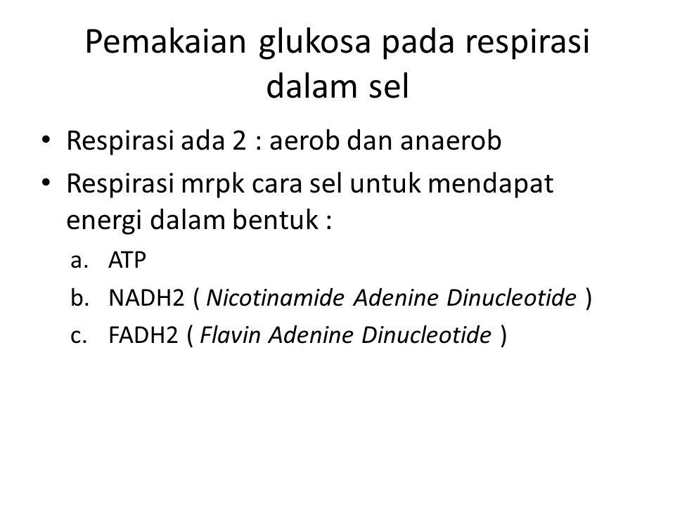 Pemakaian glukosa pada respirasi dalam sel Respirasi ada 2 : aerob dan anaerob Respirasi mrpk cara sel untuk mendapat energi dalam bentuk : a.ATP b.NADH2 ( Nicotinamide Adenine Dinucleotide ) c.FADH2 ( Flavin Adenine Dinucleotide )