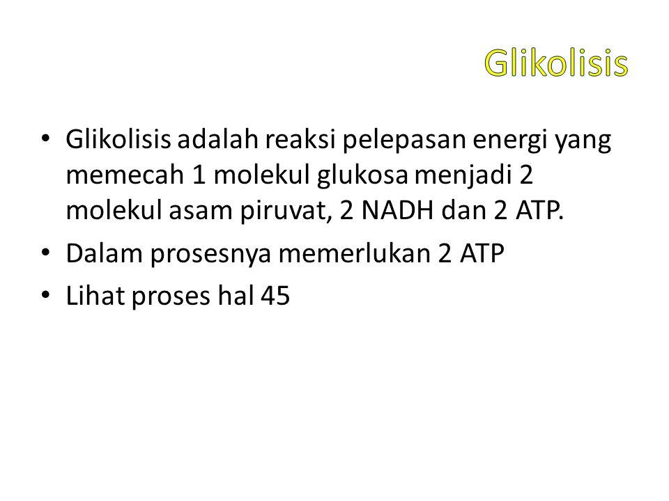 Glikolisis adalah reaksi pelepasan energi yang memecah 1 molekul glukosa menjadi 2 molekul asam piruvat, 2 NADH dan 2 ATP.