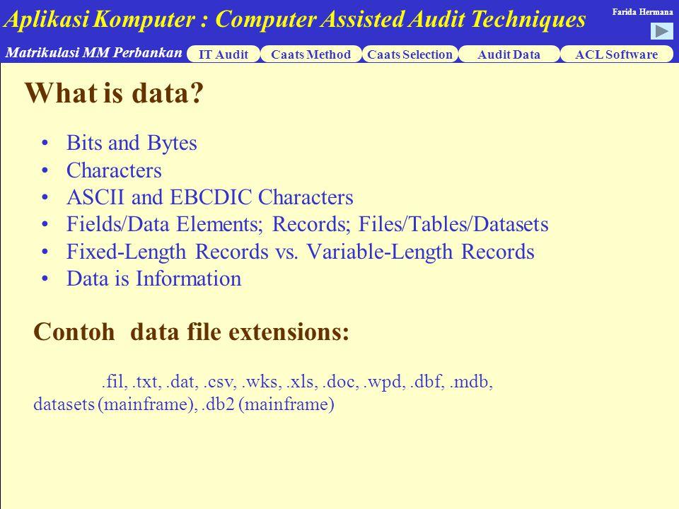 Aplikasi Komputer : Computer Assisted Audit Techniques IT AuditCaats MethodCaats SelectionACL Software Matrikulasi MM Perbankan Farida Hermana Audit Data What is data.