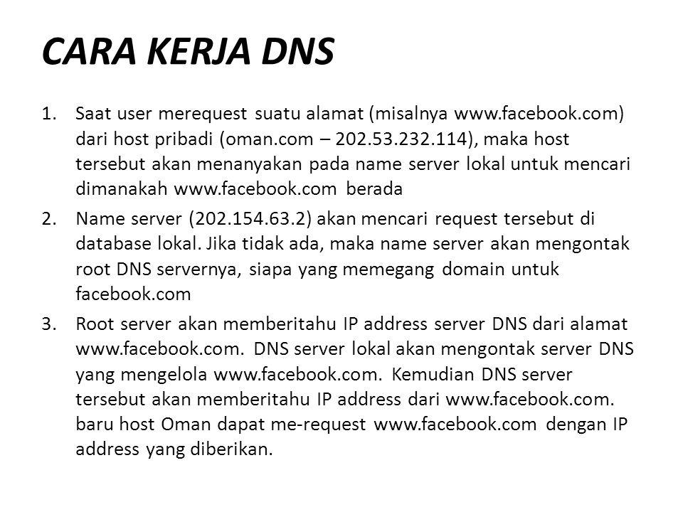 Gbr. Skema Kerja DNS