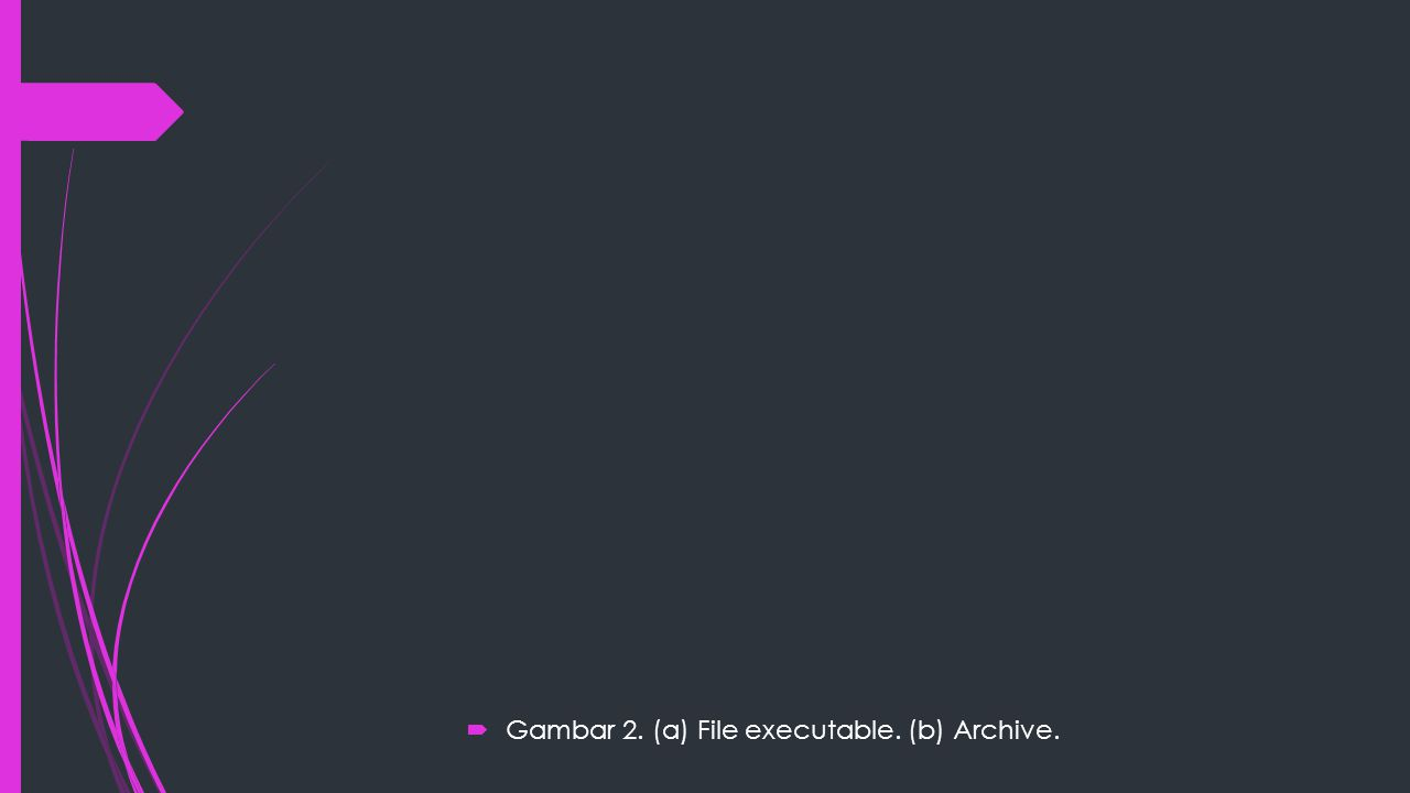  Gambar 2. (a) File executable. (b) Archive.