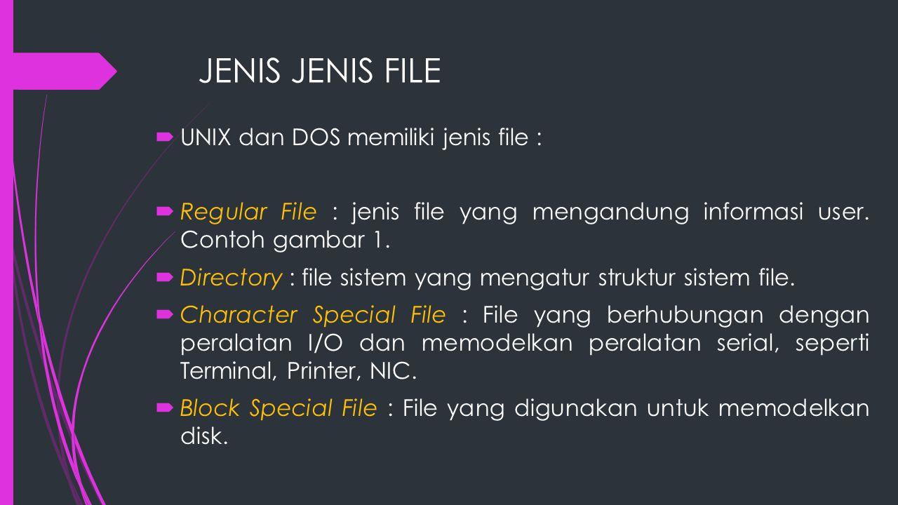 Beberapa extension file yang biasa ditemukan tampak pada tabel berikut : ExtensionArtinya *.bakFile Backup *.basProgram source Basic *.binProgram executable binary *.cProgram source C *.datFile Data *.docFile Dokumentasi *.ftnProgram source Fortran *.hlpFile Teks untuk HELP command *.libLibrary dari file.obj yang digunakan linker *.manOnline manual page *.objFile object *.pasProgram source Pascal *.texTeks masukan untuk format program TEX *.txtFile teks umum