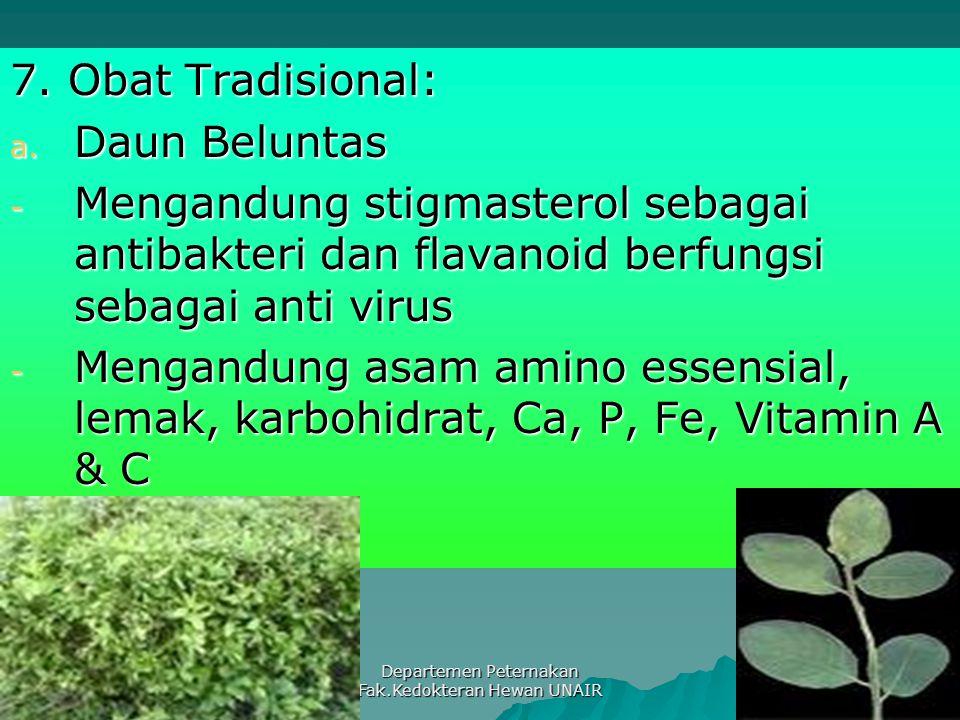 Departemen Peternakan Fak.Kedokteran Hewan UNAIR 7. Obat Tradisional: a. Daun Beluntas - Mengandung stigmasterol sebagai antibakteri dan flavanoid ber