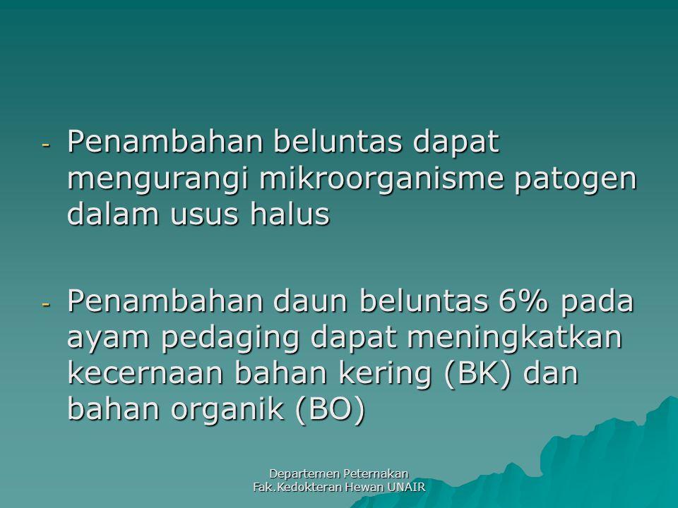 Departemen Peternakan Fak.Kedokteran Hewan UNAIR - Penambahan beluntas dapat mengurangi mikroorganisme patogen dalam usus halus - Penambahan daun beluntas 6% pada ayam pedaging dapat meningkatkan kecernaan bahan kering (BK) dan bahan organik (BO)