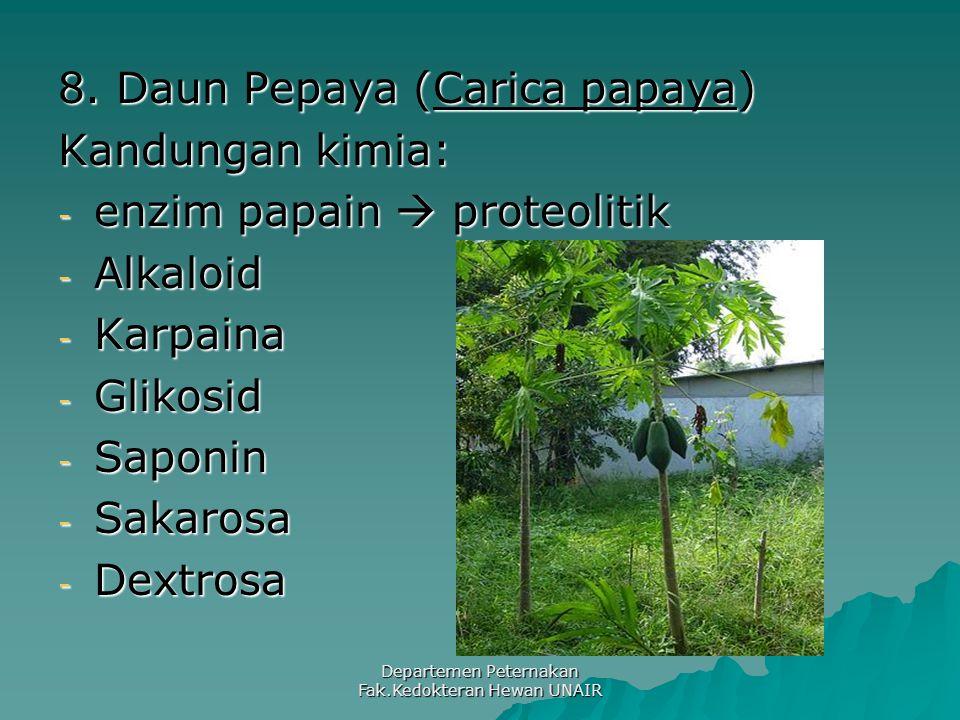 Departemen Peternakan Fak.Kedokteran Hewan UNAIR 8. Daun Pepaya (Carica papaya) Kandungan kimia: - enzim papain  proteolitik - Alkaloid - Karpaina -