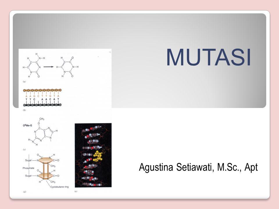 Agustina Setiawati, M.Sc., Apt MUTASI