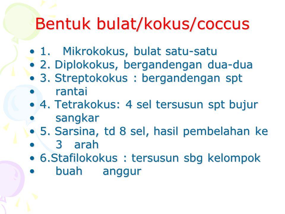 Bentuk bulat/kokus/coccus 1. Mikrokokus, bulat satu-satu1. Mikrokokus, bulat satu-satu 2. Diplokokus, bergandengan dua-dua2. Diplokokus, bergandengan